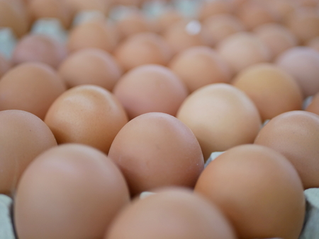 Slective focus of fresh chicken eggs on trays for sale at a supermarket ready to be picked up by a customer