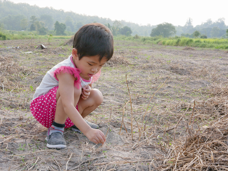 Innocent little Asian baby girl, 33 months old, trying to plant dry grasses on the ground to keep them alive Stock Photo