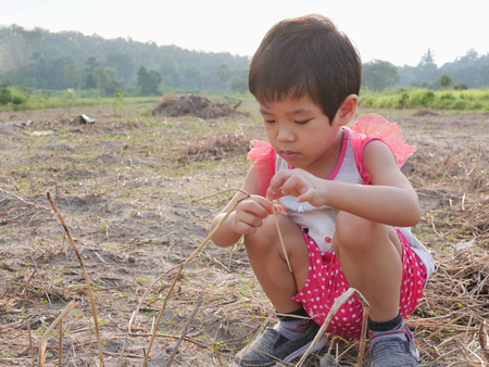 Little Asian baby girl, 33 months old, playing with dry grasses on an outdoor ground - engaging with nature provides positive impact on babys health and development
