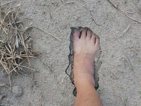 Bare foot of a man on natural soft sandy soil ground