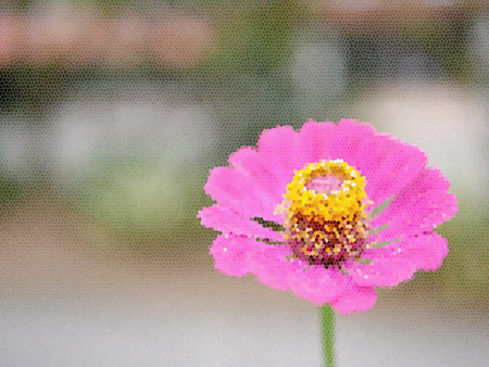 Stained glass illustration. Close up of a single beautiful blossoming pink flower with its yellow pollens on a blurry background Banco de Imagens