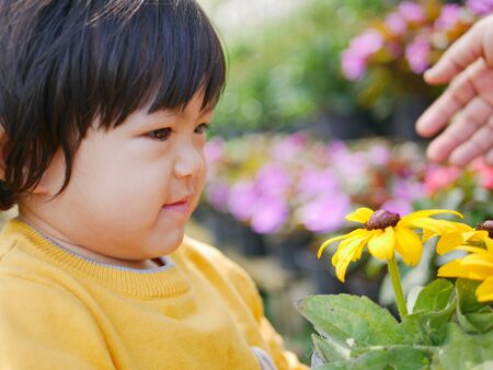 Close up of a happy little Asian baby girl receiving  taking a pot of refreshing yellow flowers from her mother - engaging with nature provides positive impact on childrens health and development