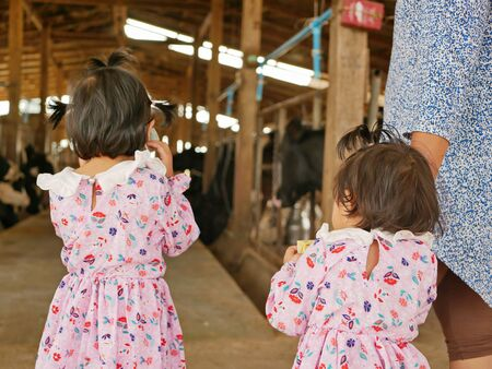 Little baby girls, sisters, visiting an organic dairy farm with her auntie - tour with the kids learning how far does their milk travel to get to their cups