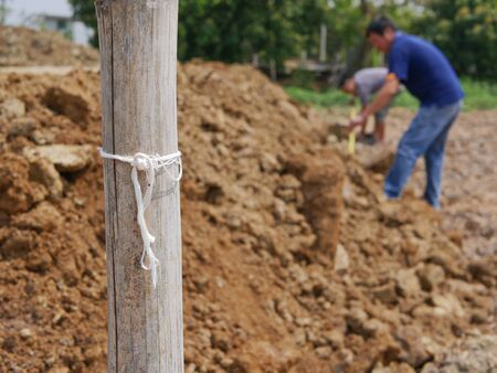 Bamboo / wooden pole being used as a mark for a land measurement during a survey