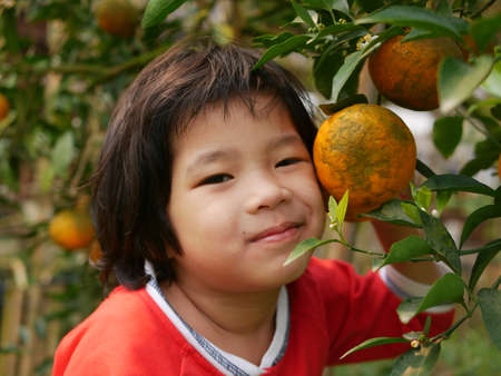 Happy little baby girl, 3 years old, with a big ripe orange on its branch in an orchard 免版税图像
