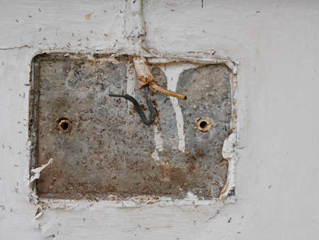 Many small ants living behind a wall mounted doorbell being revealed, after removing the broken old one 免版税图像