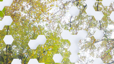 Abstract background, hexagons in different heights, top view, green and yellow leaves reflection, 3D rendering 免版税图像