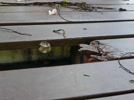 Damaged, rotten, area of outdoor wooden floor due to being exposed to rain and sunlight, could cause serious accident / injury