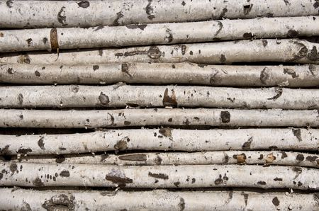 kindling: Not sawn birch logs. For the kindling fire. Close-up.