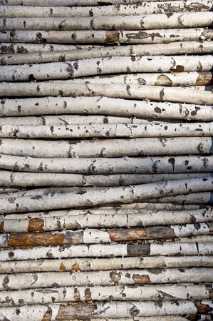 Not sawn birch logs. For the kindling fire. Close-up Stock Photo