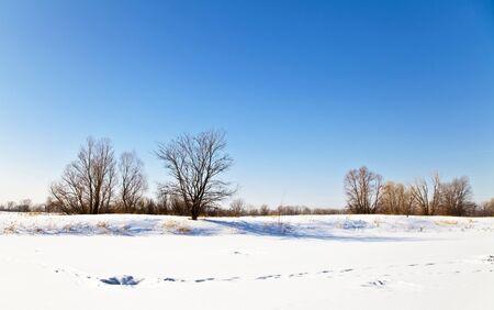 Winter landscape with snow. Russian winter. Zdjęcie Seryjne