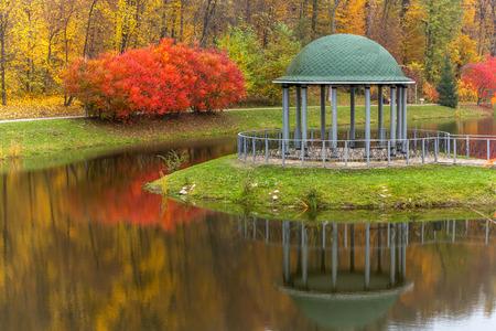 fall trees: park, autumn, nature, panorama, landscape, garden, colorful trees, seasonautumnal mood, colors of autumn, autumn landscape, city park, green, yellow, gold, beautiful, romance, love