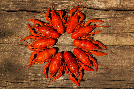 cancers: Cancers to beer, dill, boiled crawfish, beer snacks, pub, texture, crayfish, sea crayfish