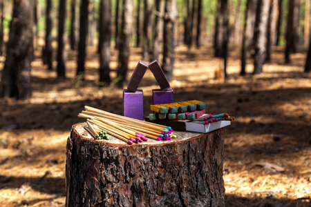 Matches on a stump in the forest trees