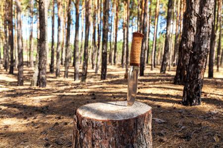 wood burner: knife on a stump