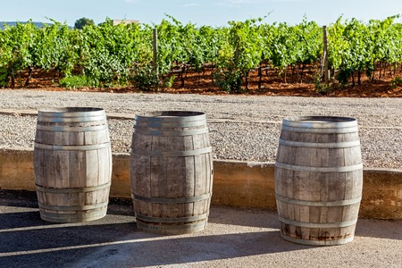 wine stocks: Three pipes for wine fermentation are standing on the background of vineyard,Pipes for wine fermentation Stock Photo