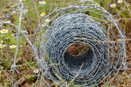 tenon: A roll of barbed wire lying in the grass,Barbed wire roll
