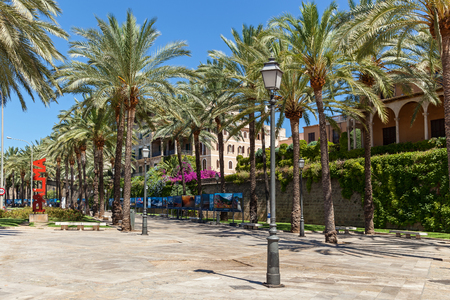 faade: Palma, Spain June 25, 2016  Palma de Mallorca resort. Palm trees on the street in downtown near the Palma de Majorca hotel.