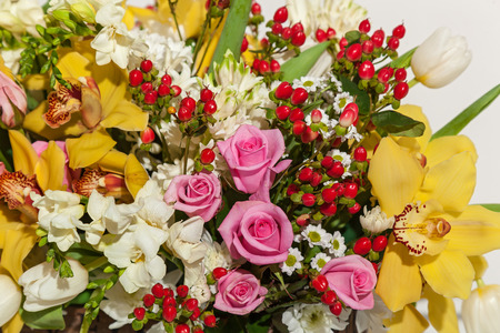 Roses and orchids. Vinous orchids and coral roses in set with different flowers close up.