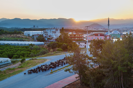 The sun rises from the mountains and lights up the city with a mosque Turkey Alanya