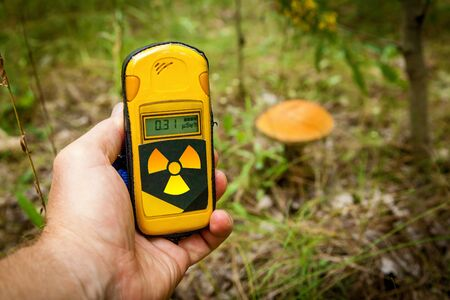 A dosimeter in hands with a level of radioactivity near mushrooms growing in the city of Pripyat, Chernobyl Exclusion Zone. Stock fotó