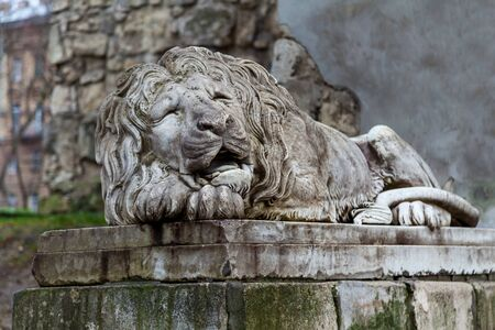 An old stone sculpture of a sleeping lion on the background of a historic building.