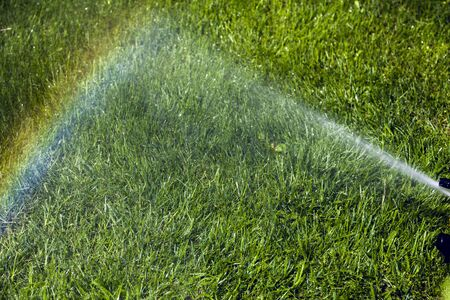 splutter: Irrigation system of the lawn at the sunshine produces a rainbow over green grass.