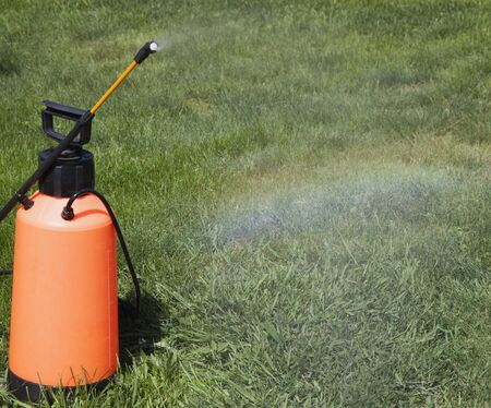 farme: Irrigation system of the lawn at the sunshine produces a rainbow over green grass.