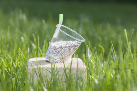 farme: In the bright sunbeams fertilizer in plastic cups on a wooden stand surrounded by bright green grass.