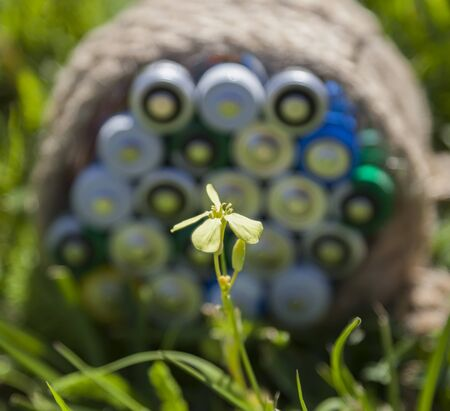 farme: Yellow flower in a bright sunbeam in the foreground and blurred batteries wrapped a rope on the grass. Stock Photo