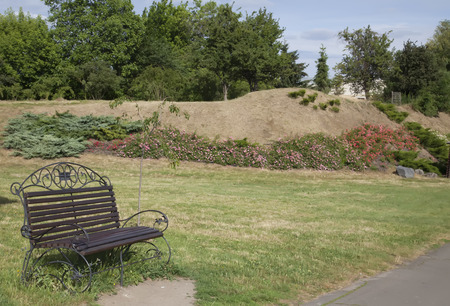 Bench in the park in the summer. Trees and roses at the background. Stock Photo