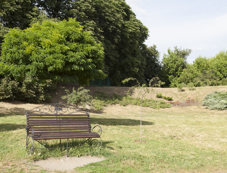 farme: Bench in the park in the summer. Trees and roses at the background. Stock Photo