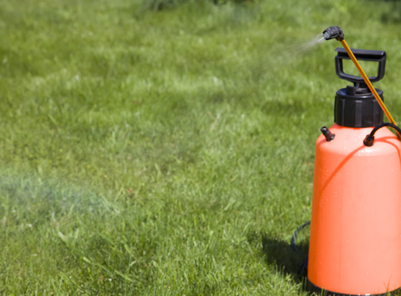 splutter: Device of spraying pesticide. Clarity on the head of the sprayer.