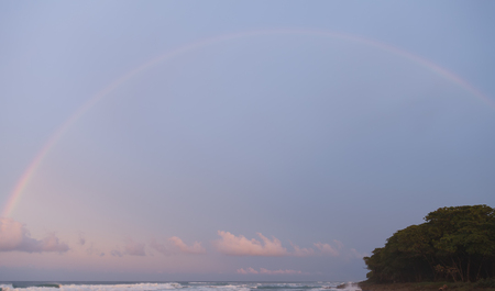 warm climate: Rainbow, pink colors of clouds and sea foam on waves. Dark forest on shore. Dramatic colors from frontal lighting sunset.