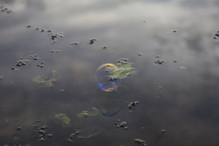 whiff: Rainbow soap bubble on the background reflections in the river. The gray sky with clouds, shallow bottom and aquatic plants.