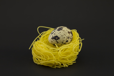 quail nest: Thin pasta in a form of nest with quail egg on a dark background.