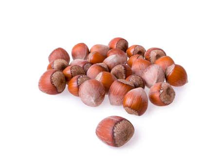 avellanas: fresh hazelnuts