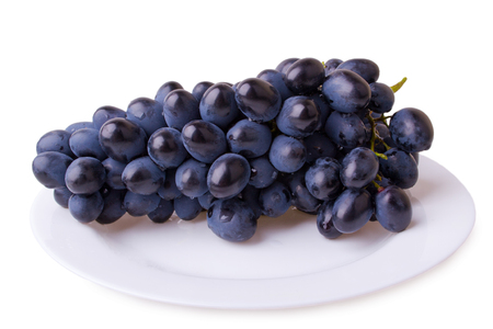 purple grapes photo