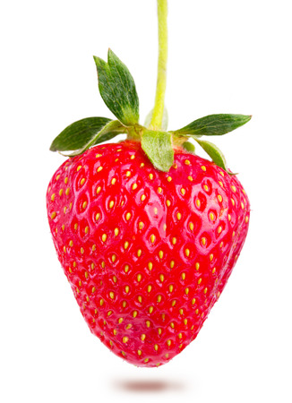 juicy: juicy ripe strawberries isolated Stock Photo