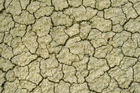 surface closeup: yellow desert soil surface closeup texture Stock Photo