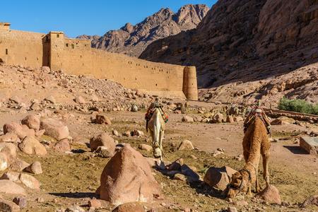 monte sinai: Monasterio de Santa Catalina y las montañas cerca de la montaña de Moisés, Sinaí Egipto
