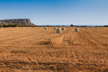 Beautiful panoramic view on straw field with bales on sea coast near of Ayia Napa and Cavo Greco, Cyprus island, Mediterranean Sea. Bright sunny day. Banco de Imagens