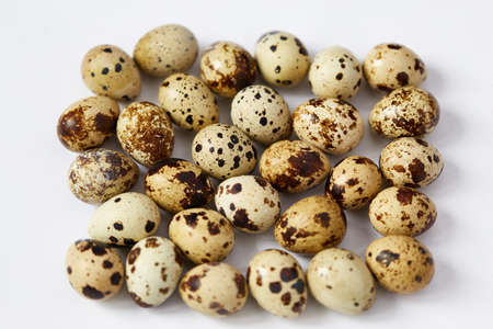 sharpness: Several small motley quail eggs are located on a white background. Small depth of sharpness. Focus in the center.