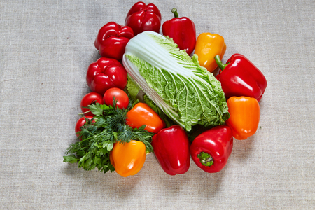 finocchio: Red, orange and yellow ripe paprika, tomato, cabbage, fennel, parsley are filled on a gray canvas