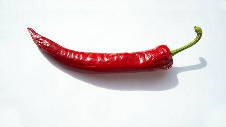 hot pepper: The Hot Pepper