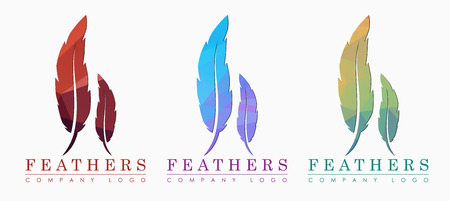 feathers template
