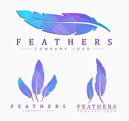 logo templates Set of different shapes of feathers. with abstract polygonal elements.