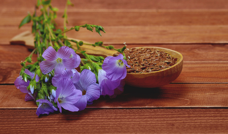 linum: Violet flower of flax and seeds in a wooden spoon on an old vintage brown table. Healthy food and nutritional supplements. Soft focus Stock Photo
