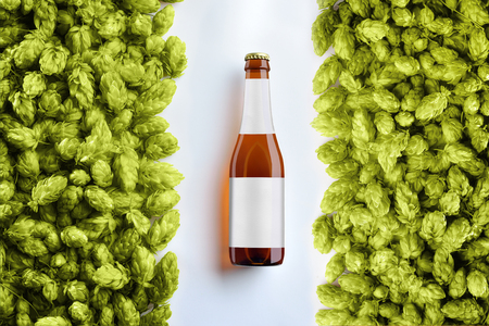 Brown beer bottlle template on white background  with two rows of hop cones.  There is a  gray label on the glass. Top of view. Mockup ready for your showcase.