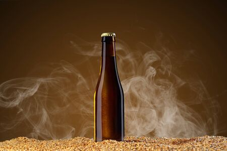 Drink mockup series. Brown beer bottle with reflections that stands on corns of wheat on a umber studio background with light smoke. Template ready to use on your design. Reklamní fotografie
